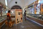 La Cadiere d'Azur. Z psami w muzeum.