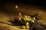Teatr bez granic – Festival d'Avignon